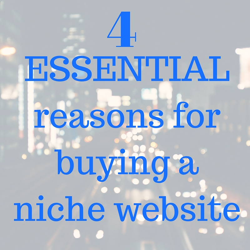 buying a niche website